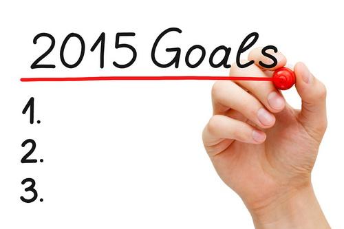 2015 SEO Goals